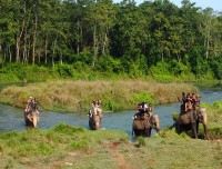 Nepal tour with Jungle safari