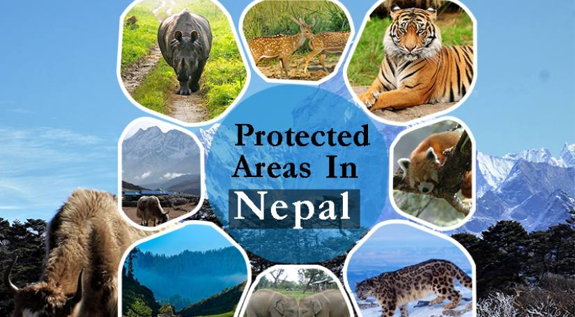 Protected Areas: Conservation Area, Wildlife reservation and Hunting Zone in Nepal
