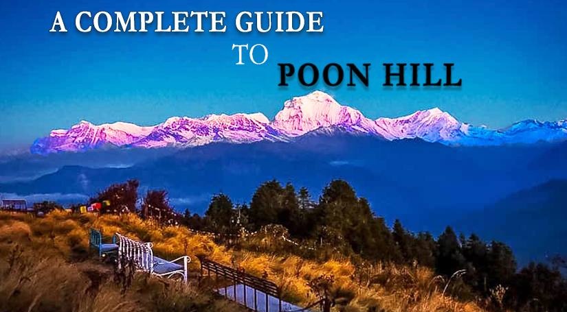 The Complete Guide For Poonhill Trek